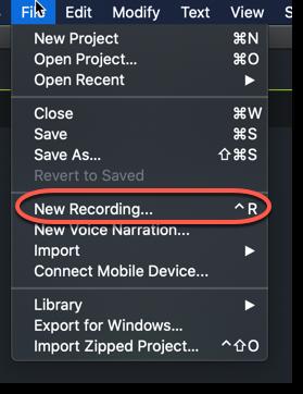 camtasia record audio