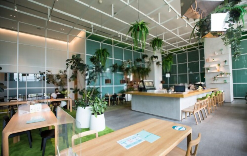 natural workspace