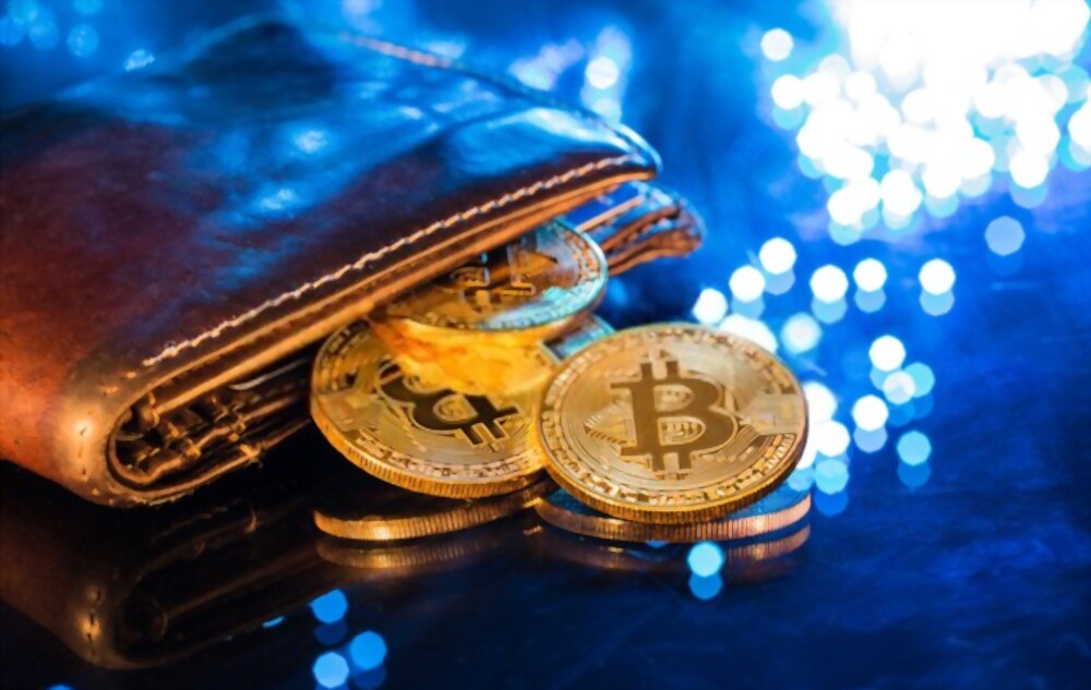 types of bitcoin wallets