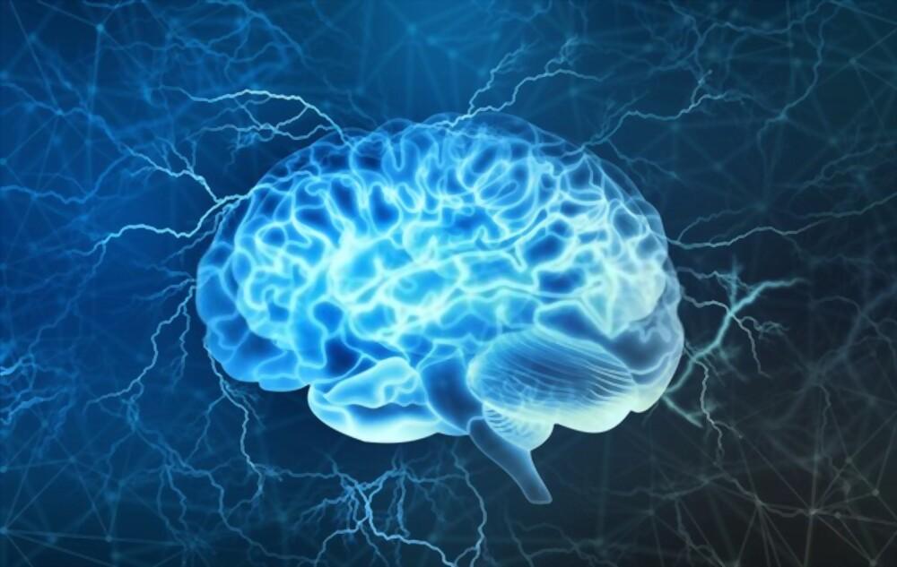 Menopause changes in brain